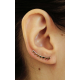 Pendientes Flags Ear Climber de Plata